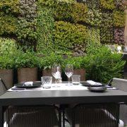 jardín vertical del restaurante quadrat en Palma de Mallorca
