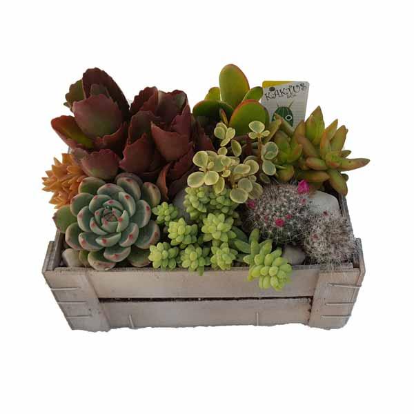 Caja de fruta clavisa for Mesa con cajas de fruta
