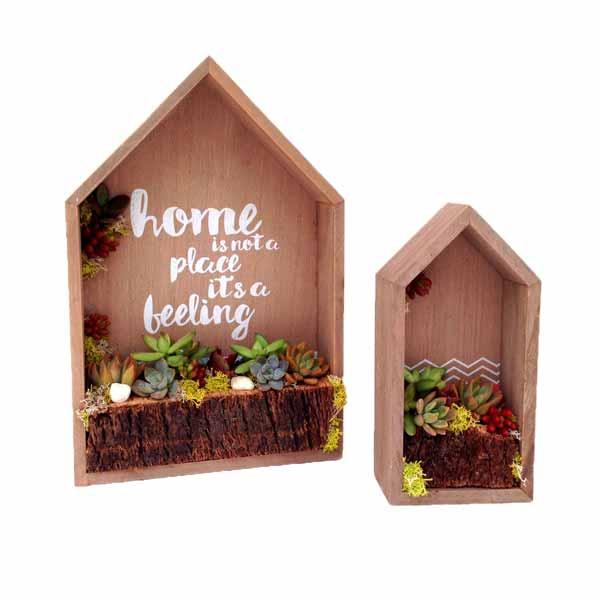 Maison pequeña con plantas crasas