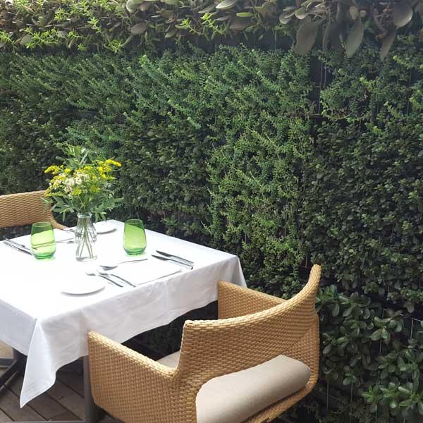 jardin vertical restaurante majestic barcelona