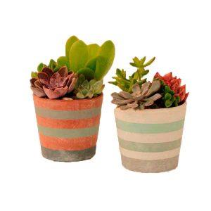… with ceramics