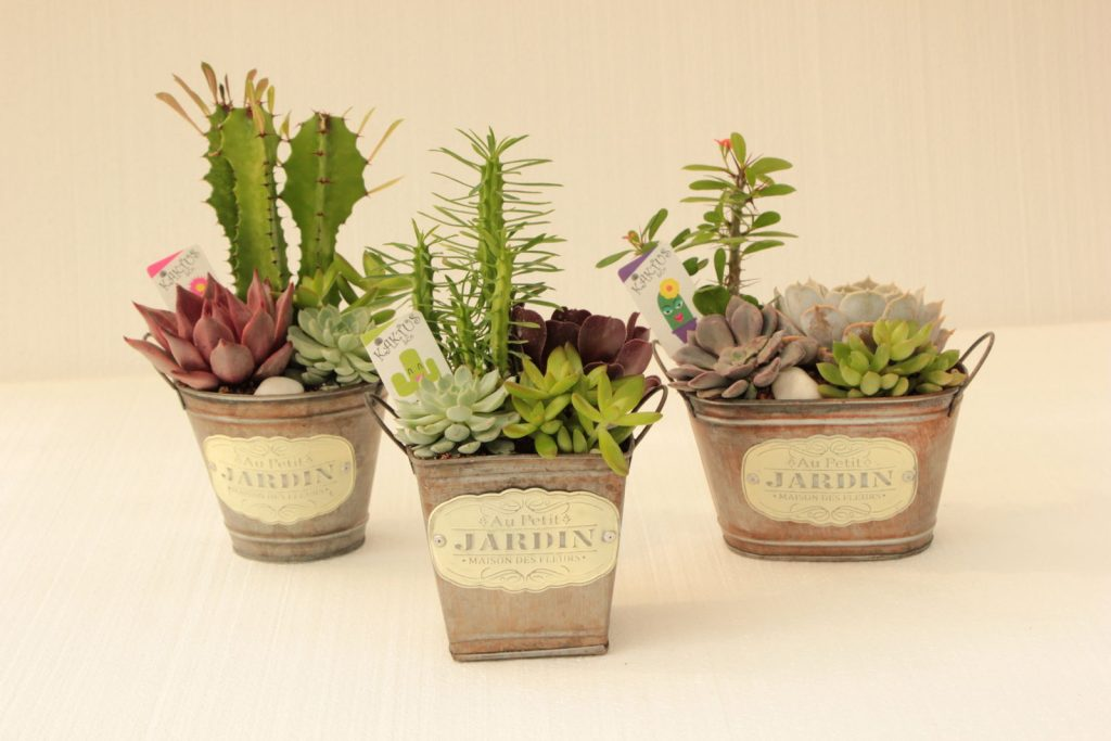 creatividad originales para decorar y regalar